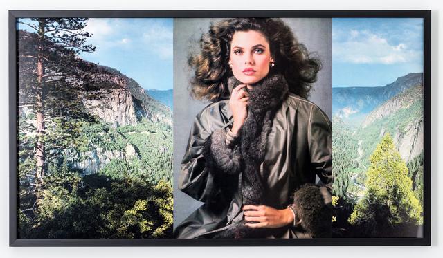 , 'Yosemite,' 1982, Downs & Ross