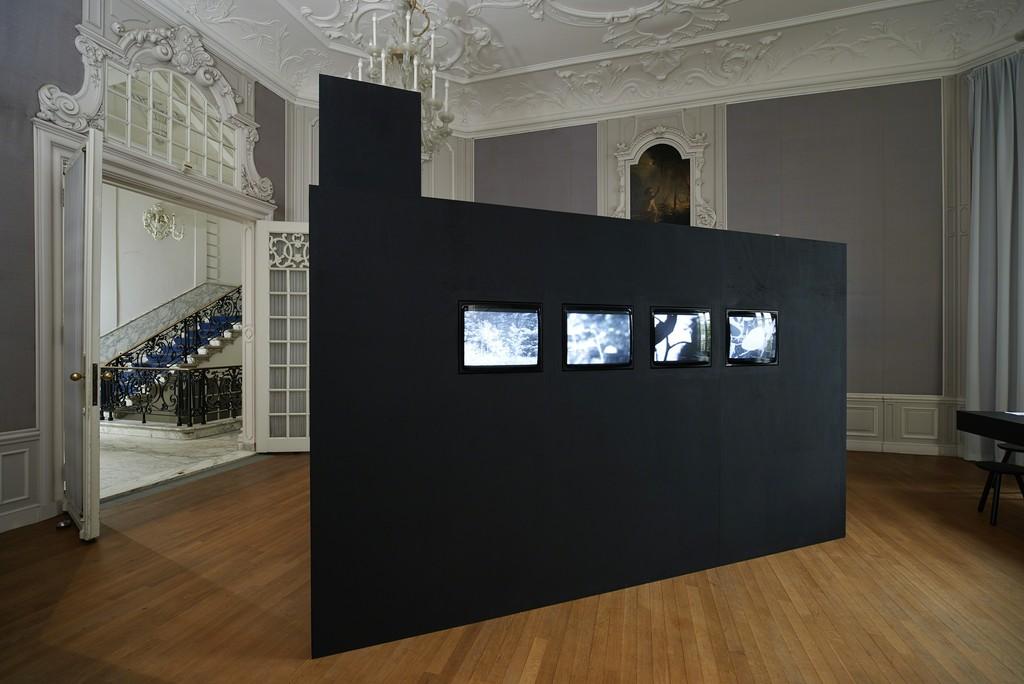 Davidson Gigliotti, Quaking Aspens, 4-channel video installation 19:01 min., 1972