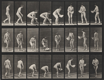 A selection of 11 plates from the classic series Animal Locomotion showing women in motion