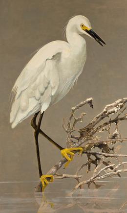, 'Snowy Egret,' 2007, Walter Wickiser Gallery