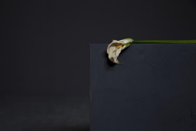 , 'La Mort de Marat,' 2016, MATÈRIA