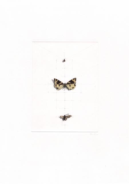 , 'butterflies,' 2014, Artdepot
