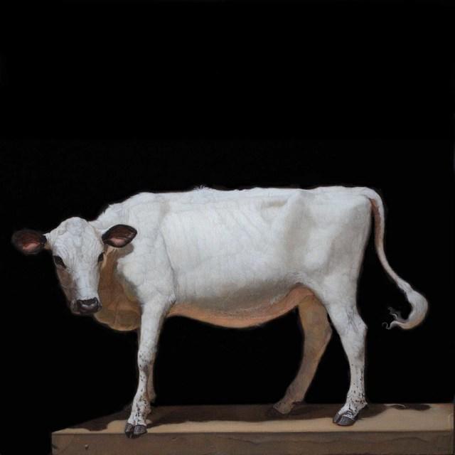 , 'A Lineback Heifer,' 2016, Gallery Henoch