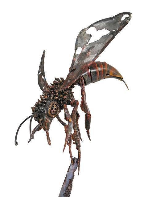 """, '""""Bee"""" /""""Arı"""",' 2012, Galeri 77"""