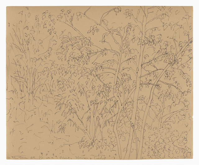 Hannah Wilke, 'Flowers', c.1985, Drawing, Collage or other Work on Paper, Ink drawing on newsprint, LaiSun Keane