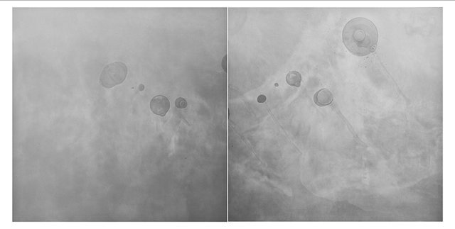Gen Aihara, 'Composition of Air 0118 (diptych) ', 2008, Photography, Unique photograms, gelatin silver prints, Lee Marks Fine Art