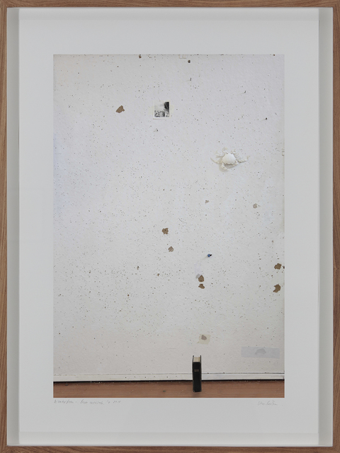 , 'Versteende boom (Wonderboom Series),' 2015, Barnard Gallery