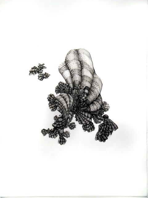 , 'Mollusk,' 2009, Atrium Gallery
