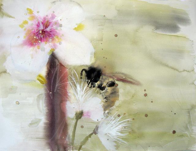 , 'Bee Polinating Apple Blossom,' 2017, Imlay Gallery