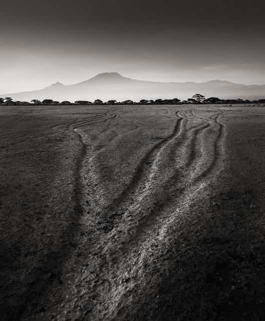 , 'Tracks of the last Giants,' Kenya 2017, Immagis Fine Art Photography