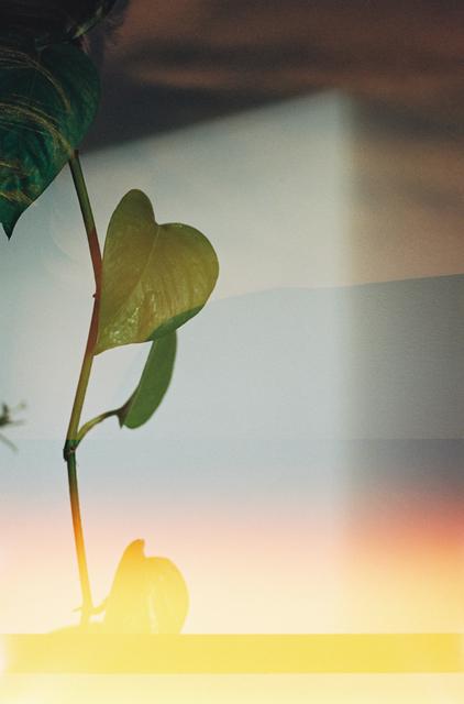 Annelie Bruijn, 'Radiance', 2019, ElliottHalls