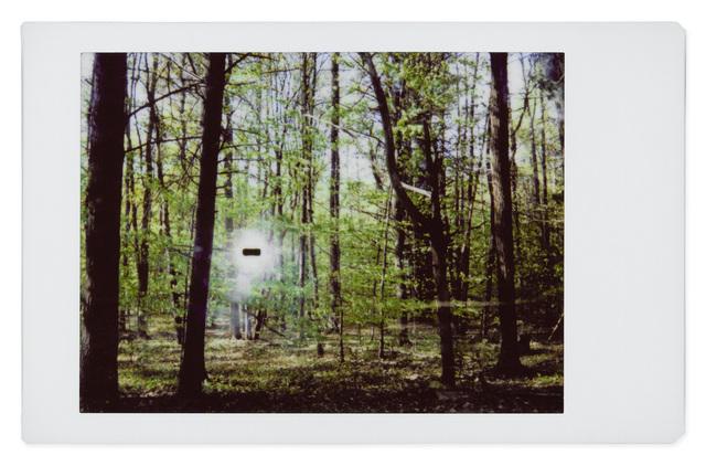 , 'Alien 15,' 2017, Robert Klein Gallery
