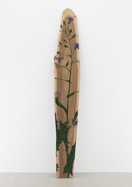 Jason Middlebrook, 'Blue Cornflower on Walnut', 2019, Tayloe Piggott Gallery