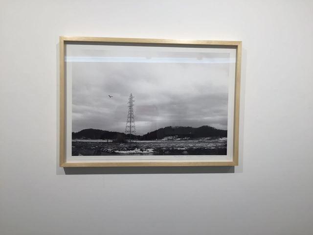 , 'Lion,' 2016, Galeria Raquel Arnaud