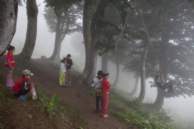 , 'Fog,' 2015, ERTI