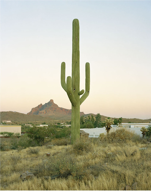 , 'East Cosmic Drive, Fountain Hills, Arizona,' 2005, ClampArt
