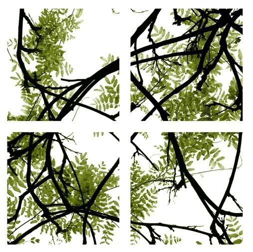 , 'Vine Series - green,' 2013, Cross Mackenzie Gallery