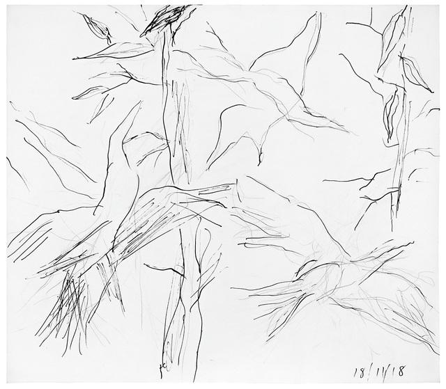 , 'Birds and Gum Leaves,' 2018, 11, 18 00:00:00 UTC, Niagara Galleries