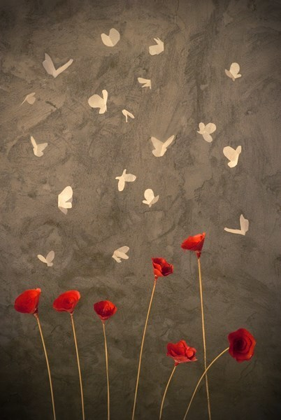 , 'Mariposas (Butterflies),' , Maria Elena Kravetz
