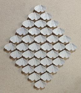 , 'Moths,' 2013, Mizuma Art Gallery