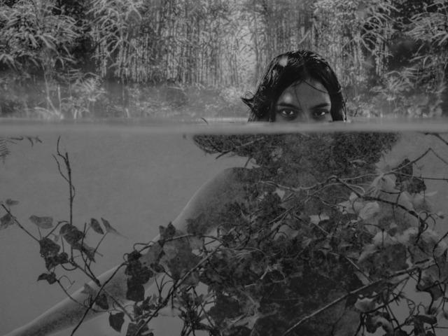 , 'The Pond,' 2017, MPV Gallery