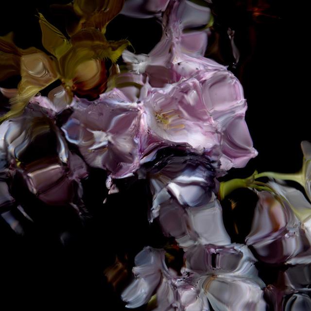 , 'Floral Study [0448],' 2012, Dellasposa