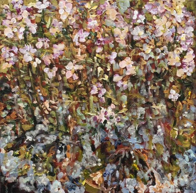 , 'Highplants,' 2017-2018, Gallerí Fold