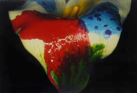 , 'Painting Flower,' 2004, Pepe Cobo