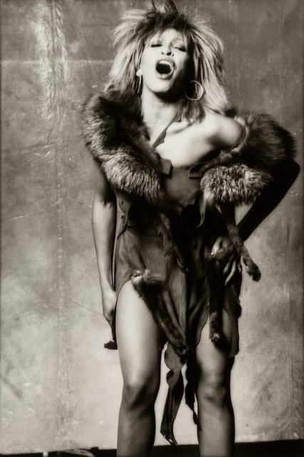 Norman Seeff, 'Tina Turner', 1983, Heritage Auctions
