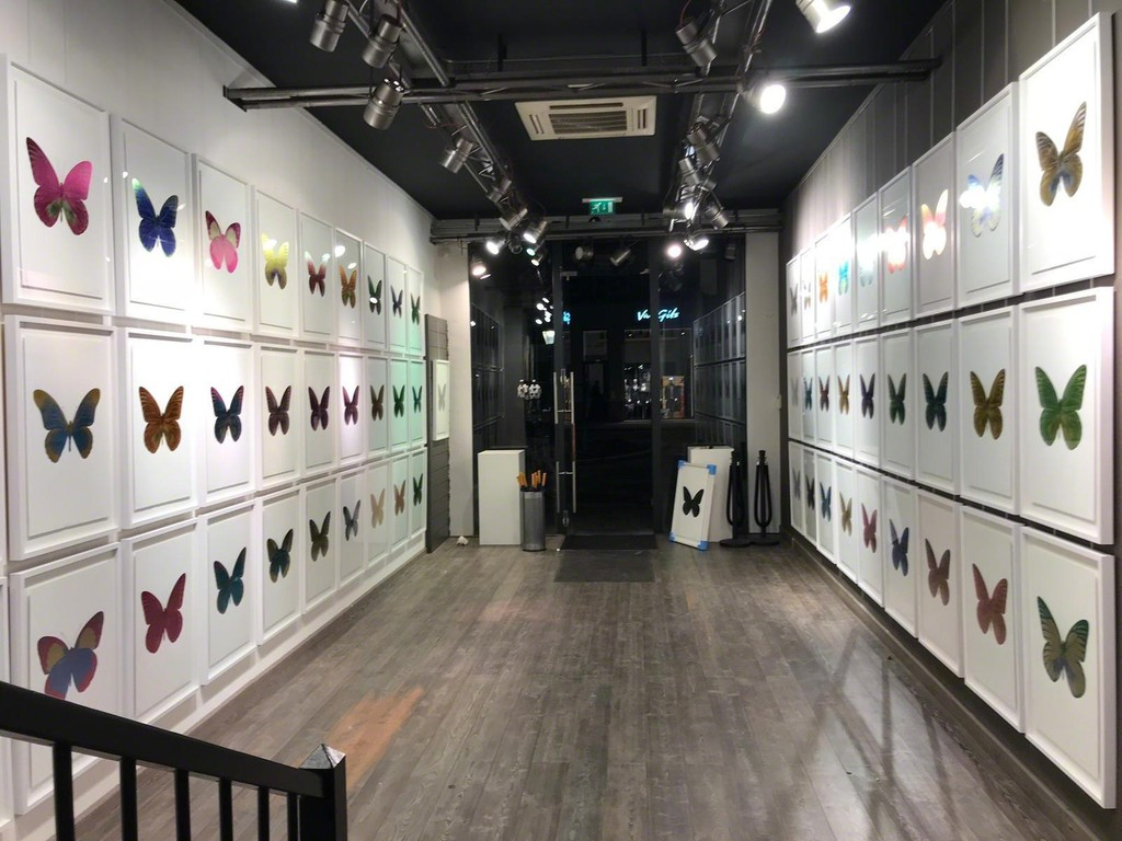 Damien Hirst - Souls. Kunsthuis Breda. Nov - Dec 2018