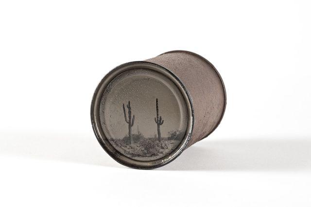 , 'Saguaros #23,' 2014, photo-eye Gallery