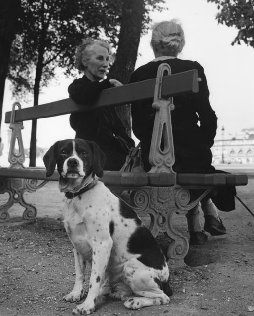 Sabine Weiss, '2 femmes et chien (Two women and dog)', 1954, Holden Luntz Gallery