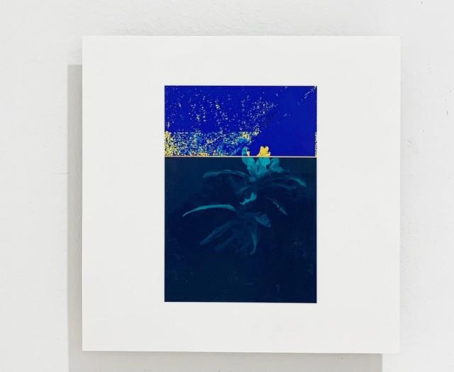 Federico García Trujillo, 'Almost-Decorative Green', 2019, Lucia Mendoza