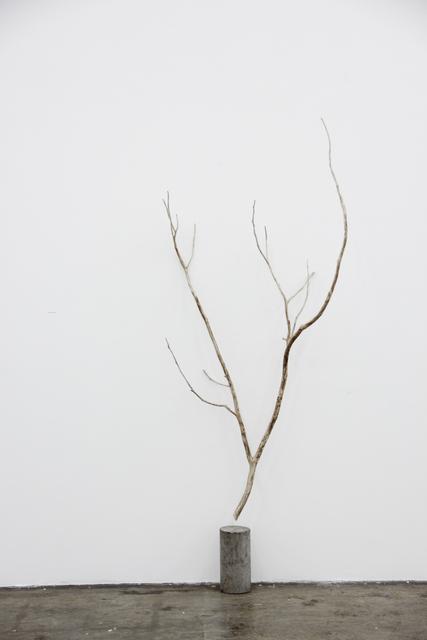 , 'Sin título ,' 2017, Luis Adelantado