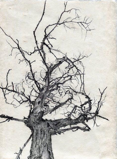 , 'Tree No. 89, April 27th, 2016,' 2016, Garvey | Simon
