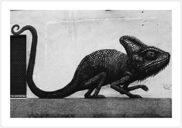 , 'ROA - Malaga 2015,' 2017, Black Book Gallery