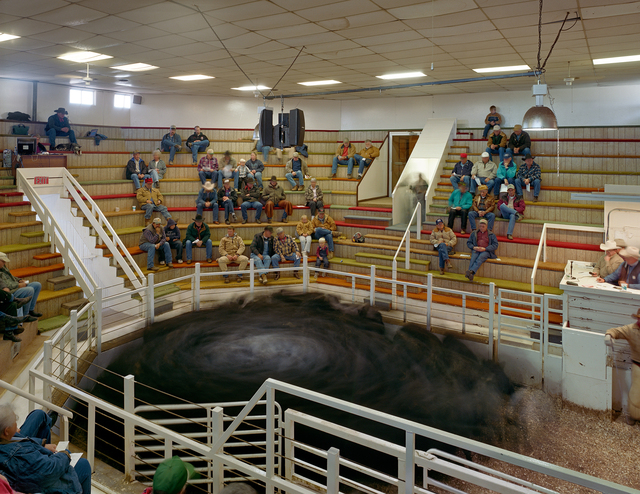 , 'Bassett Livestock Auction, Rock County, Nebraska,' 2006, Kopeikin Gallery