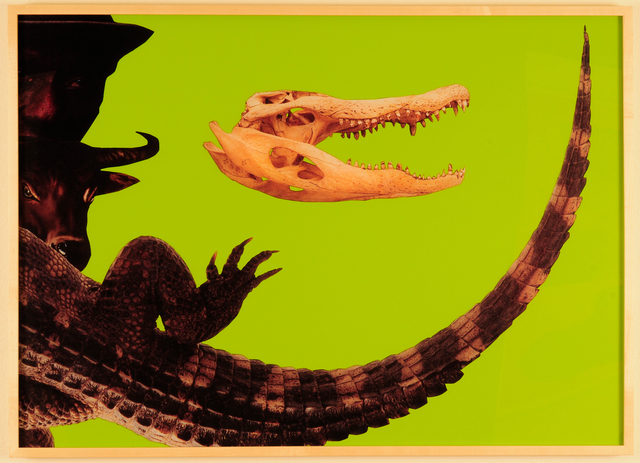 , 'Alligator S-Curve 2,' 2011, Deborah Colton Gallery