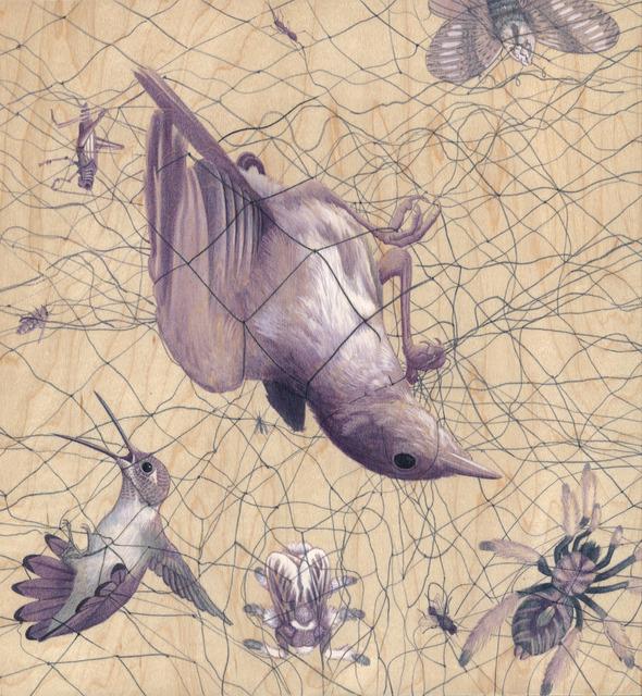 , 'Gravity,' 2012, Joshua Liner Gallery