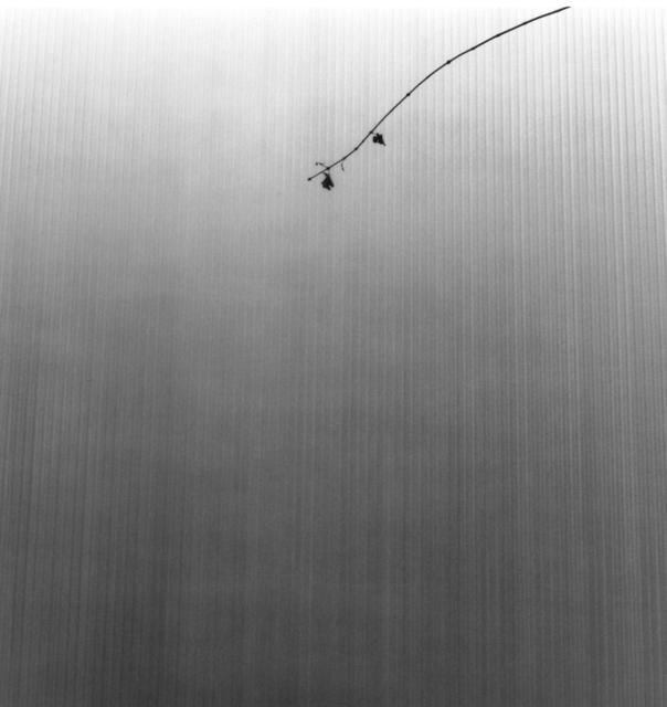 Frauke Eigen, 'Nippori ', 2006, Atlas Gallery