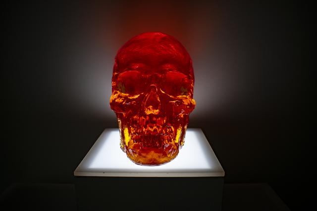 Sam Tufnell, 'Mandarin Skull', 2018, Sculpture, Resin and lighted pedestal, Marcel Katz Art