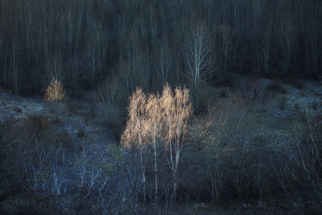 , 'Monumentet / The Monument (01),' 2018, Galleri Magnus Karlsson