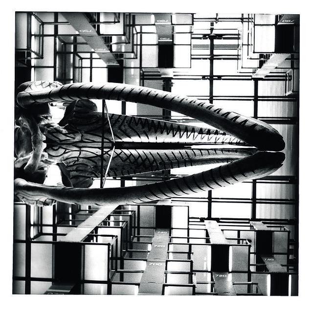 Tomás Casademunt, 'BV V, serie Biblioteca Vasconcelos', 2007, Photography, Pigmentos sobre papel algodon, le laboratoire