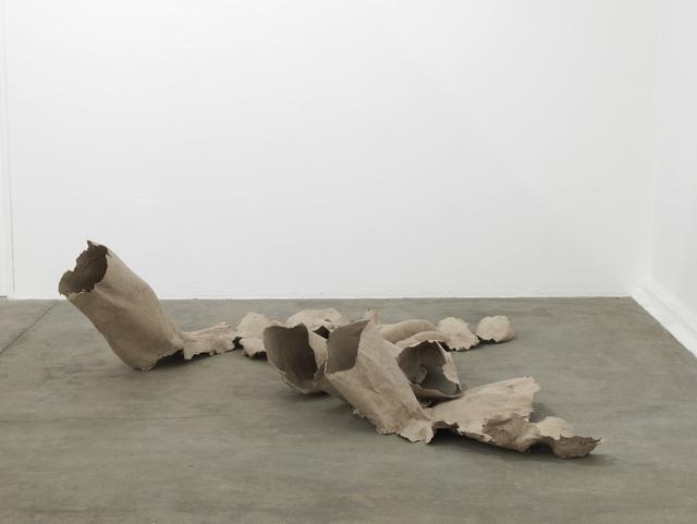 , 'Tree Trap Oaxaca,' 2013, Barbara Wien