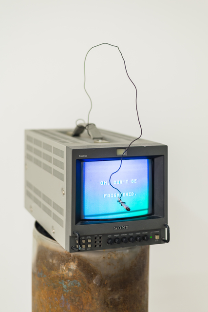 , 'I'm a computer,' 2018, Ever Gold [Projects]