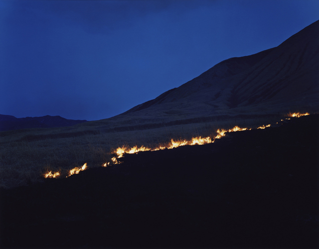 Rinko Kawauchi, 'Untitled, from the series Ametsuchi', 2013, ROSEGALLERY
