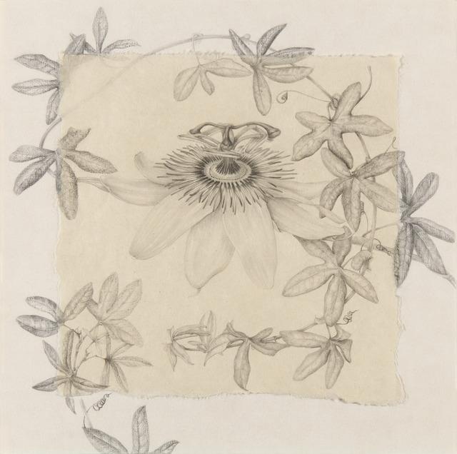 , 'Pasiflora II,' 2014, Lucia Mendoza