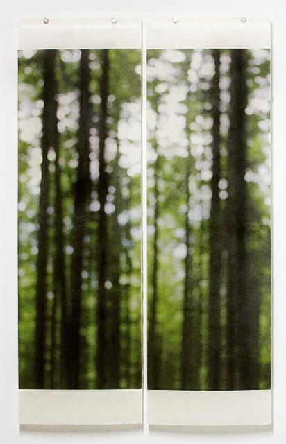 Jeri Eisenberg, 'Summer Greens (Trailside)', 2008, Carrie Haddad Gallery