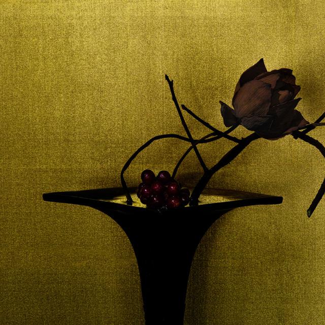 , 'scarlet kadsura / lotus,' 2017, Galerie Marie-Robin