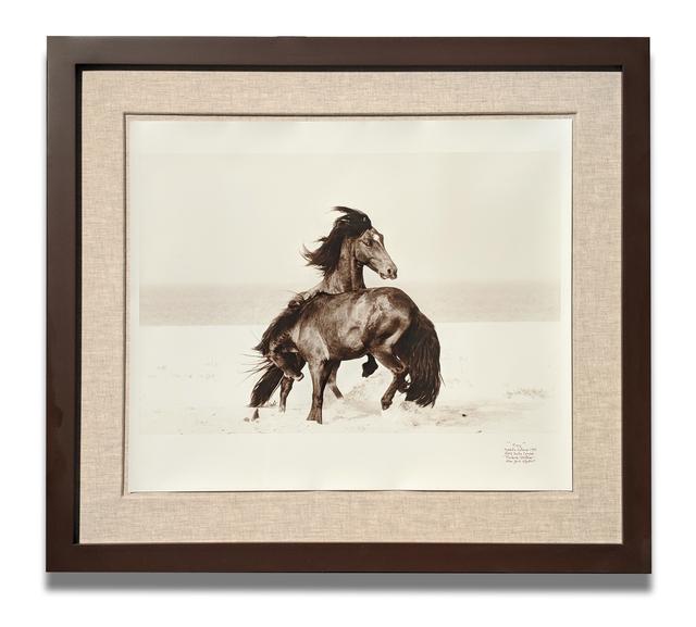 Roberto Dutesco, 'FURY', 1996/2015, LongHouse Reserve Benefit Auction